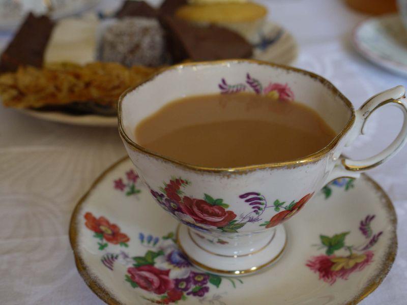 Teacup,opengarden