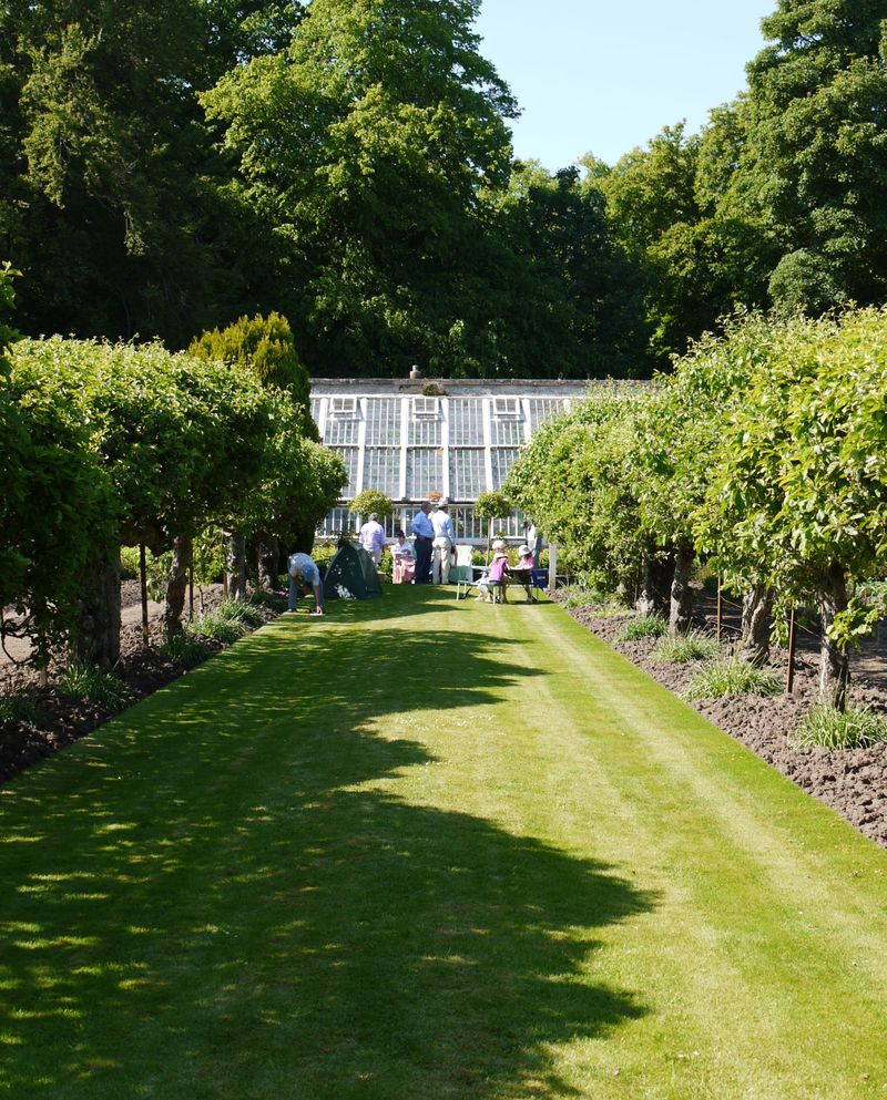 View-to-greenhouse