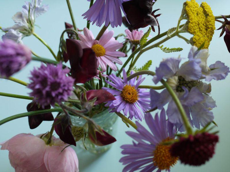 Garden-flowers2