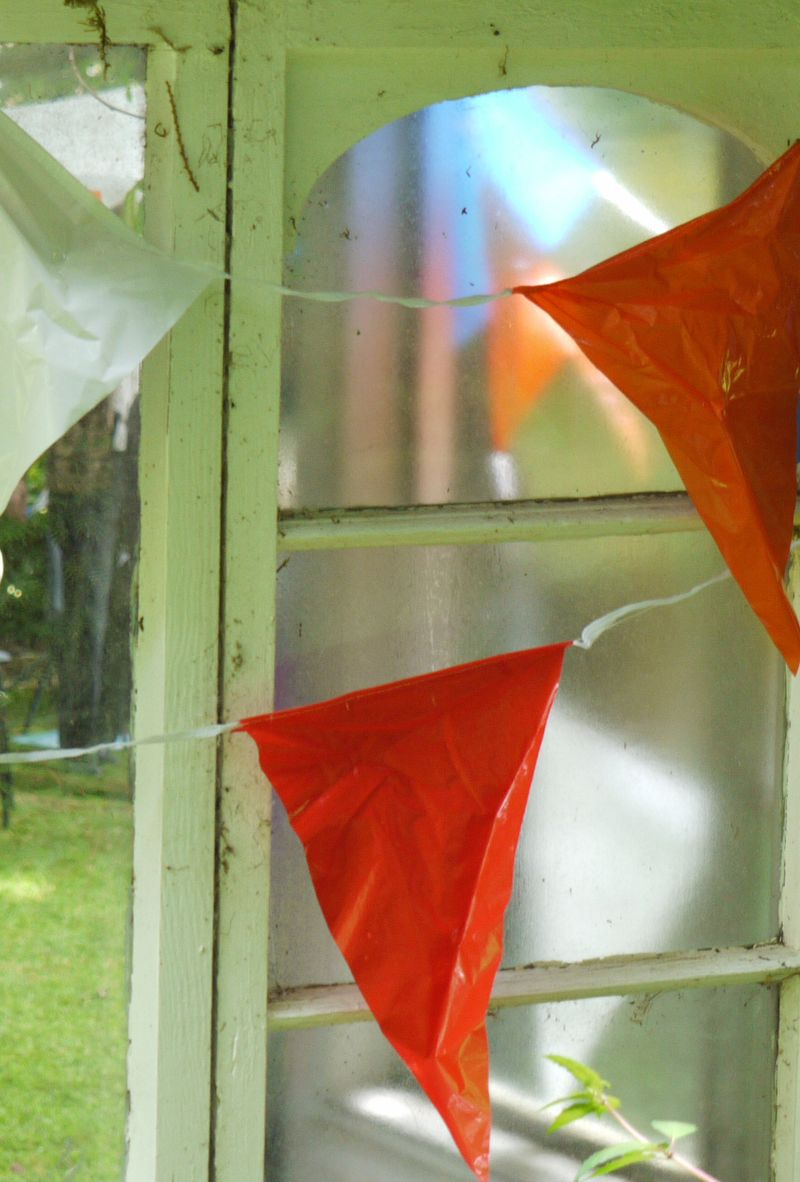 Open-gdn.bunting