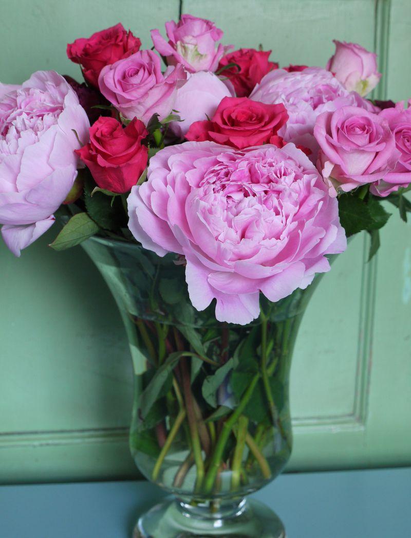 Red,pink-roses,vase