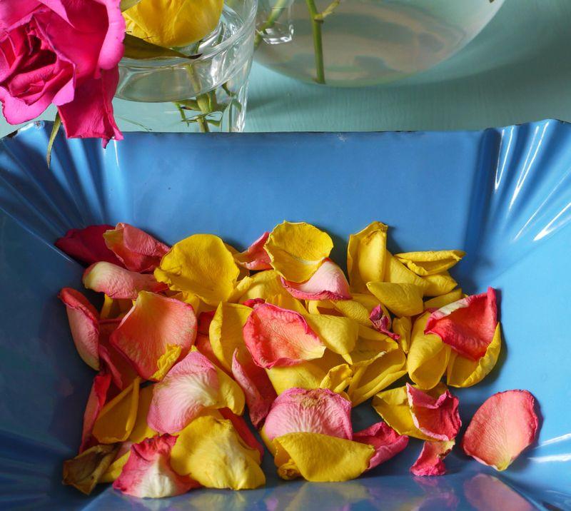 Studio-flowers-6