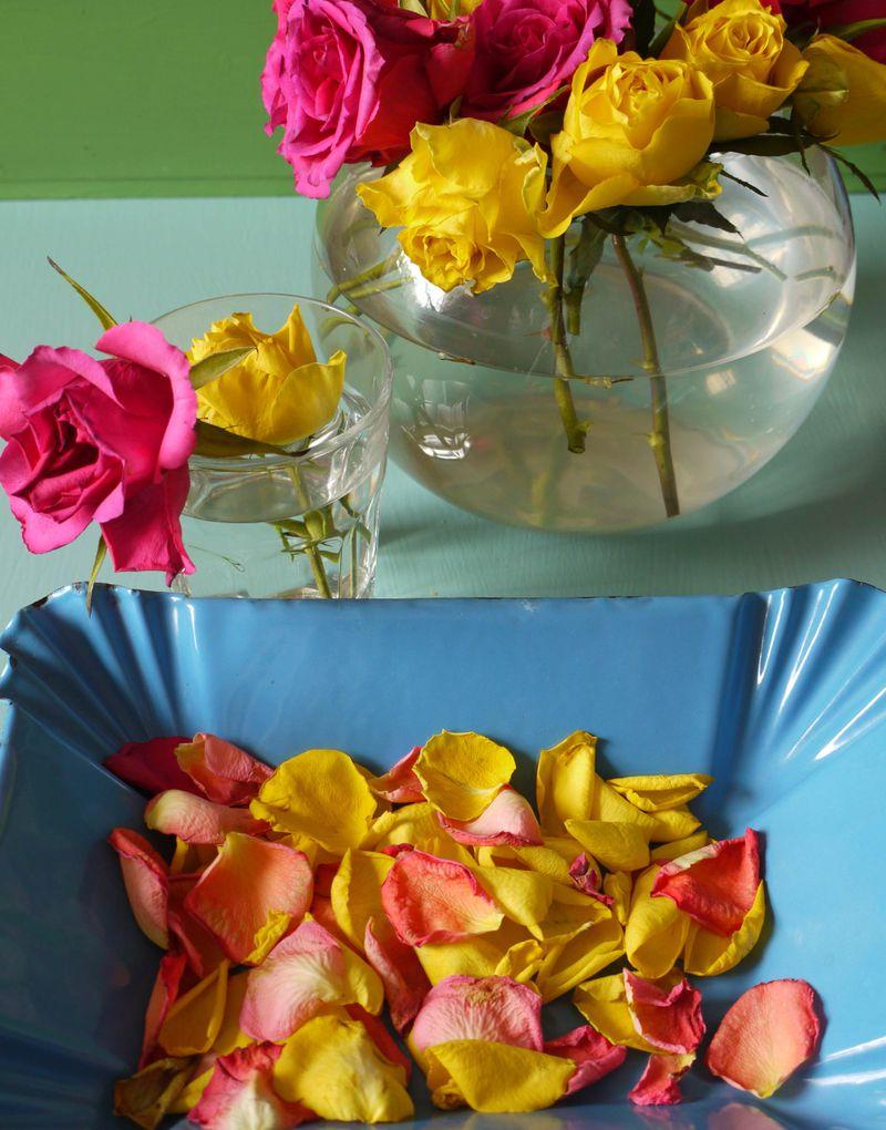 Rose-petals-9