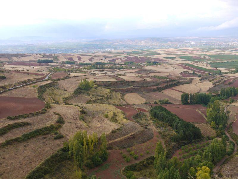 Rioja-landscape-2