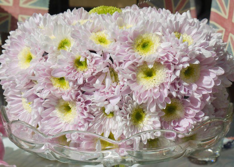 Flower-cake-4