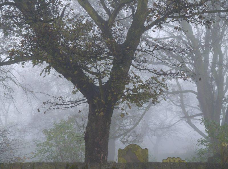 Mist-church-yard