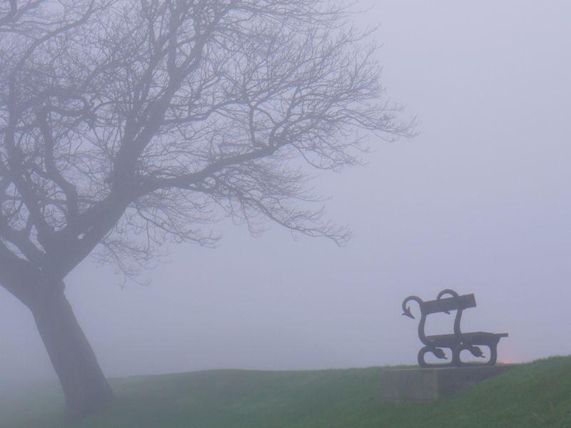 Mist-1-bench,-2