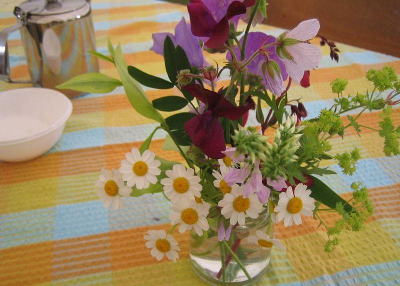 Flowers,-country-fair