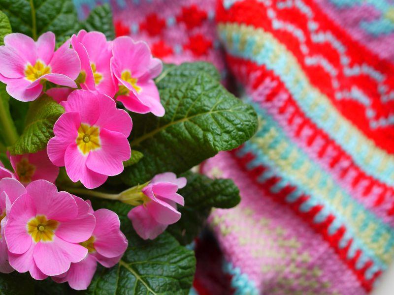 Fair-isle-scarf,-1st-image