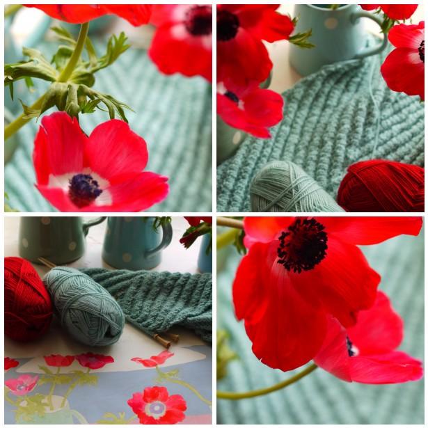 Mosaic anemones 2