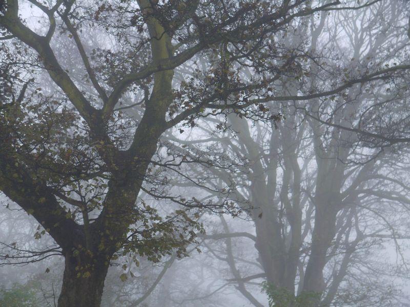 Mist-church-yard-2