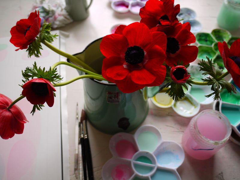 Red-anemones,-desk-blurred
