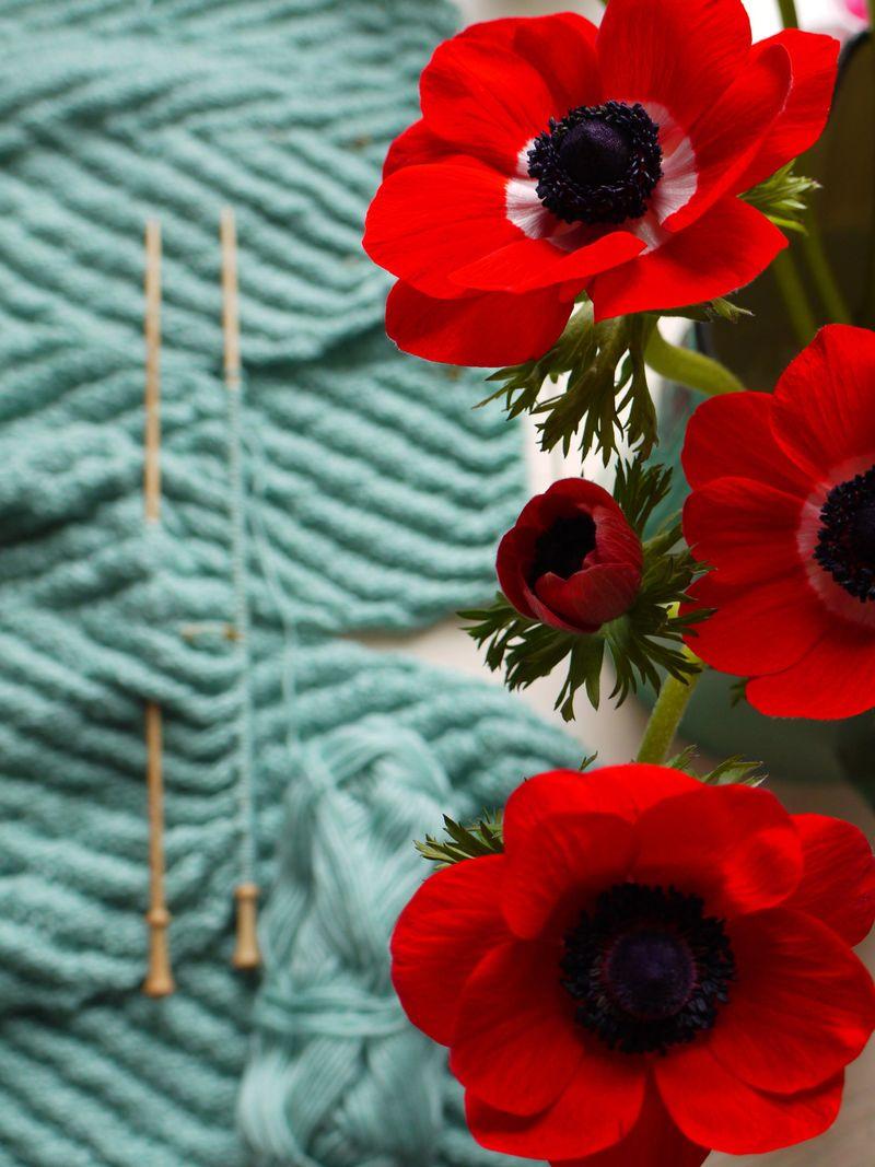 Red-anemones,-knitting,-lon
