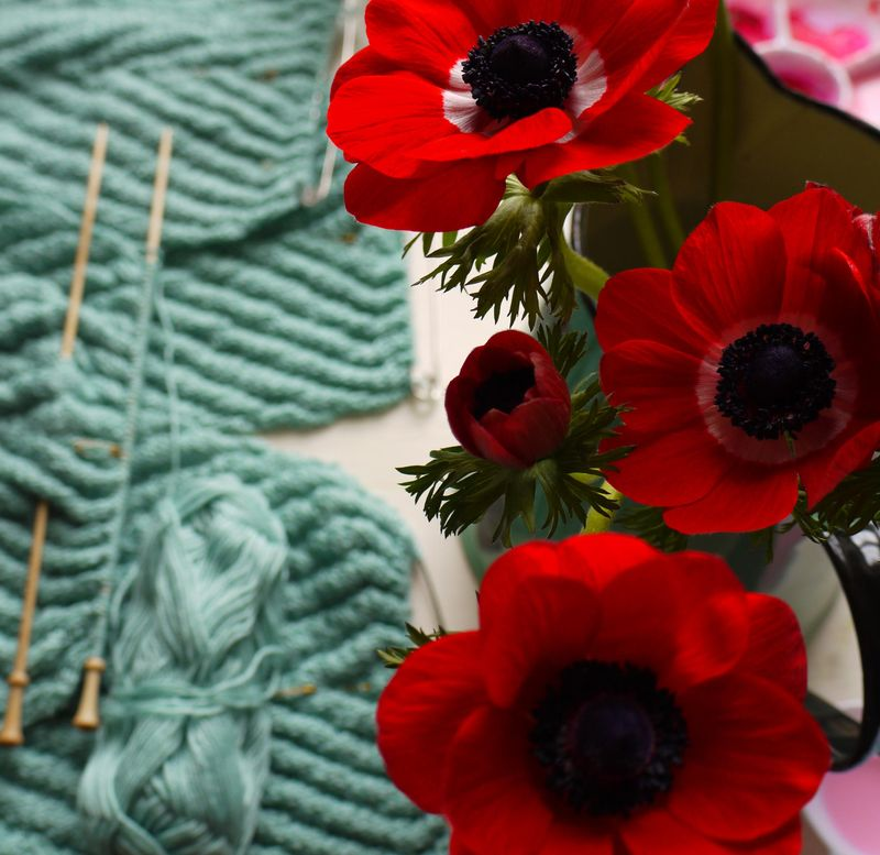 Red-anemones-in-squares,-kn