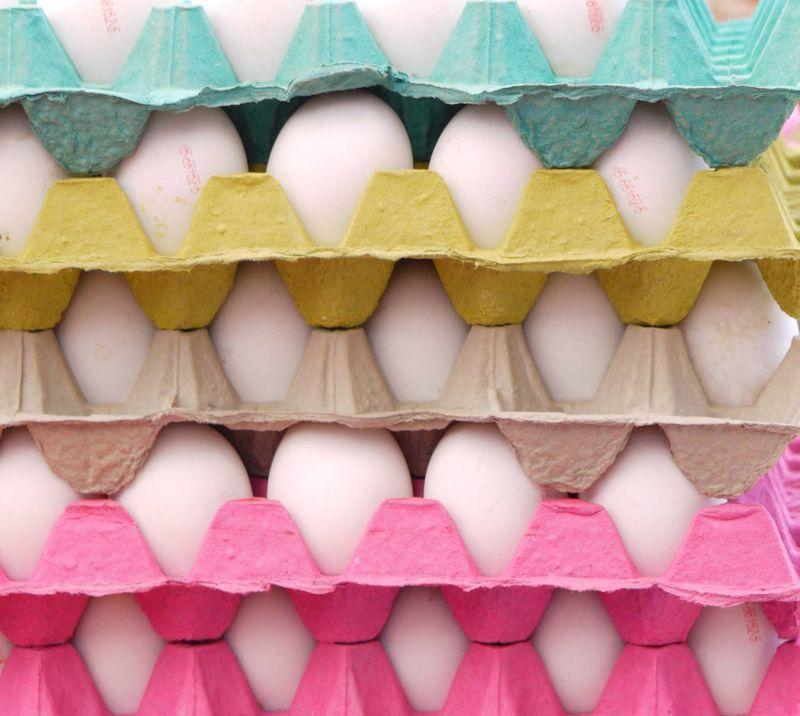 Turk,-eggs-in-square