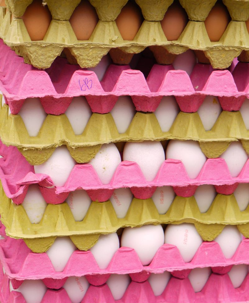Turk,-egg-cr