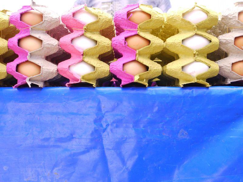 Turk,-eggs-on-blue-cloth