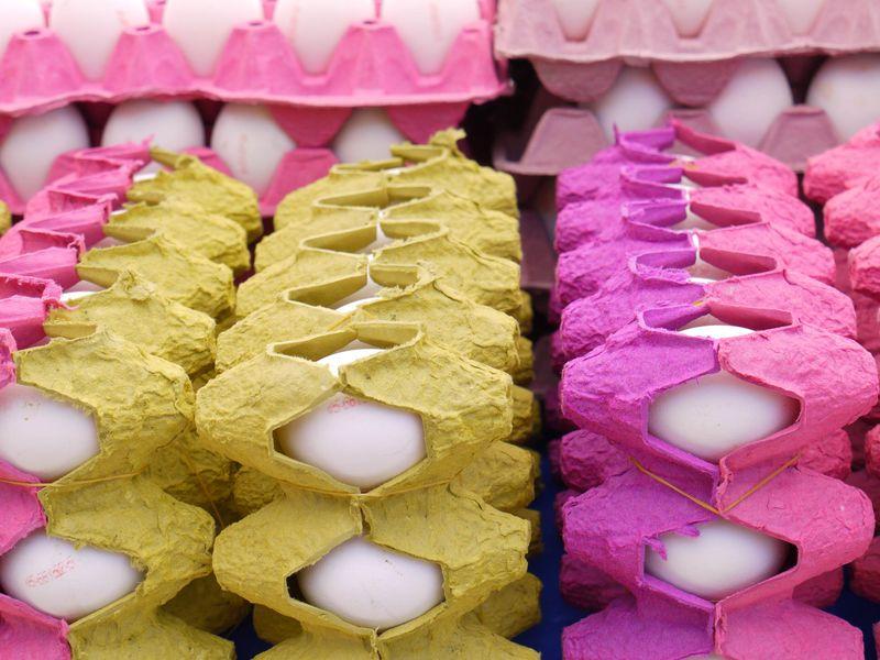 Turk,-eggs-pink,-deep-pink