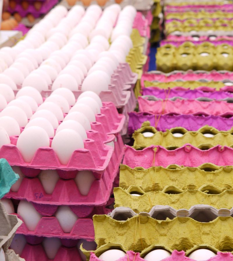 Turk,-eggs,-rows