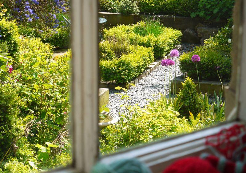 Garden-from-window-w-wool