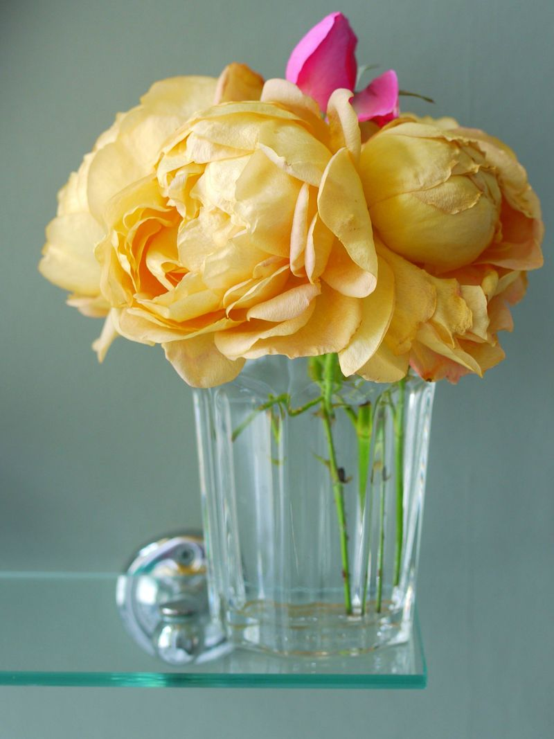 Roses,-in-glass,-full-pic