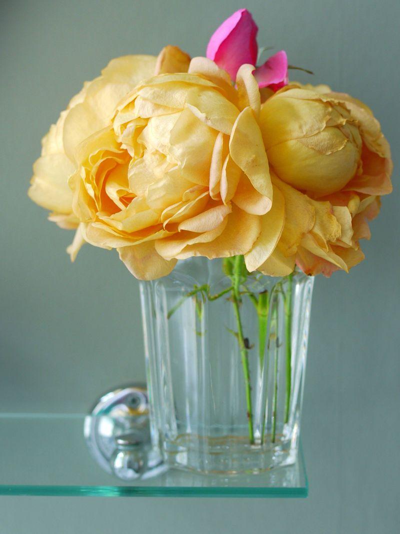 Roses,-in-glass,-full-pic