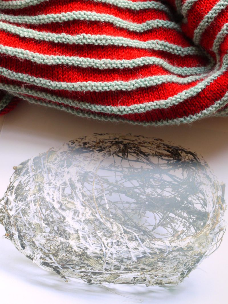 Nest,-knitting
