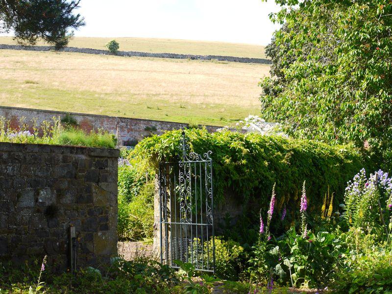 Garden-through-wa;;