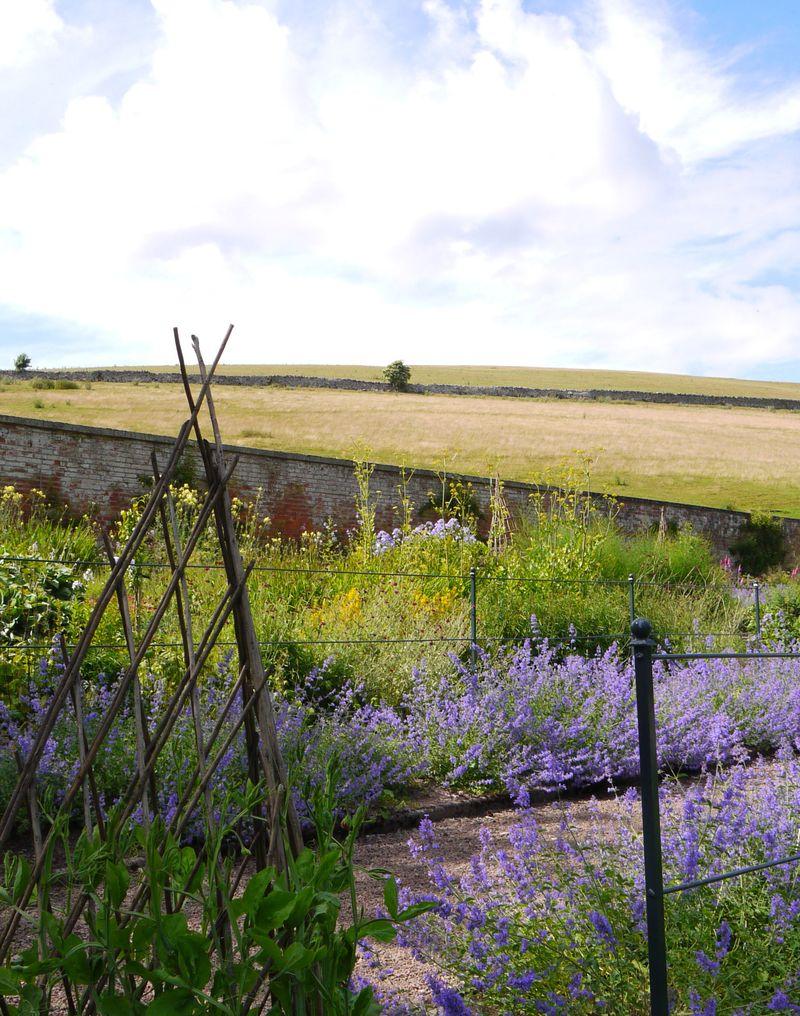 Garden,-hill-sky