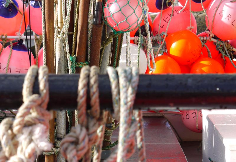 Buoys,-full-pic