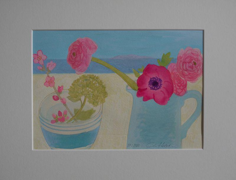 Still-life,-pink-ranun-moun