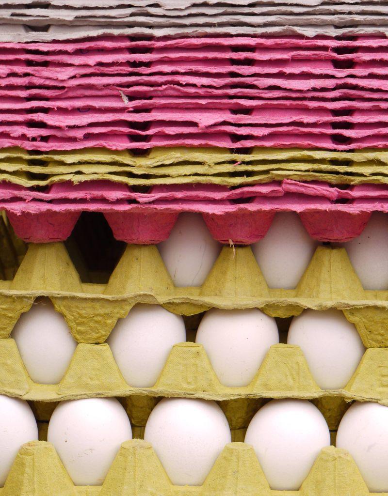 Turk,-egg-pink-yell,-grey
