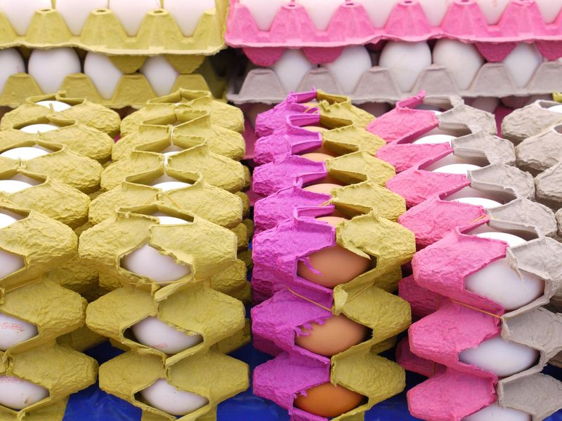 Turk,-eggs-stacked
