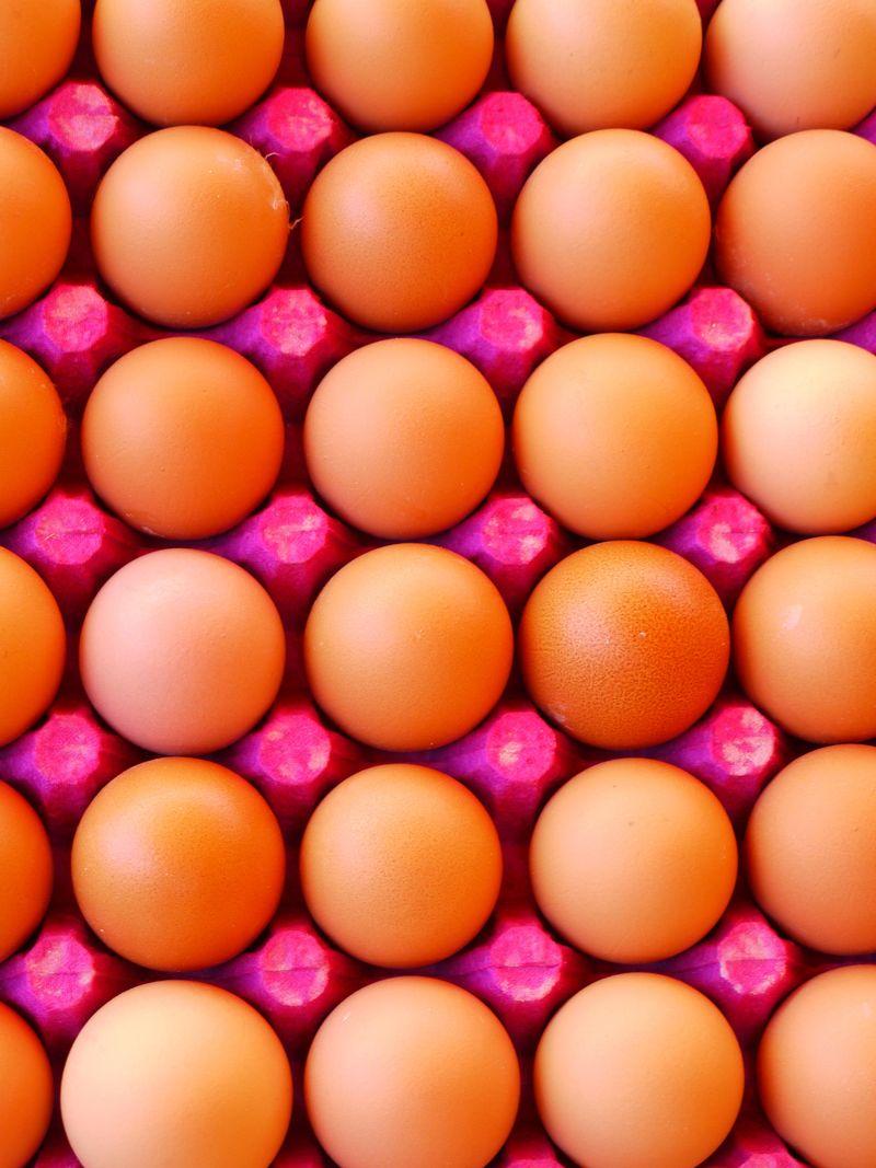 Turk,-eggs,-pink-carton