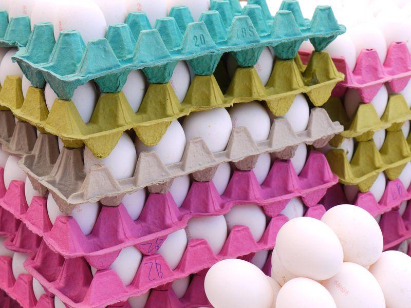 Turk,-eggs-plus-white-eggs