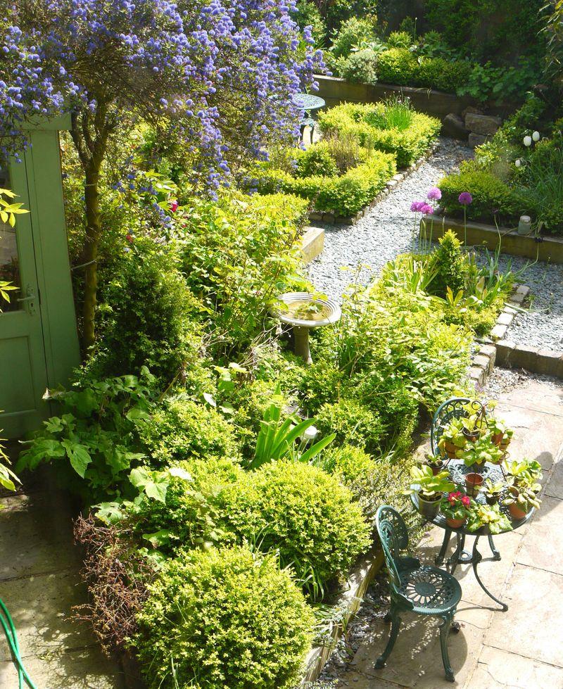 Whole-garden-from-window