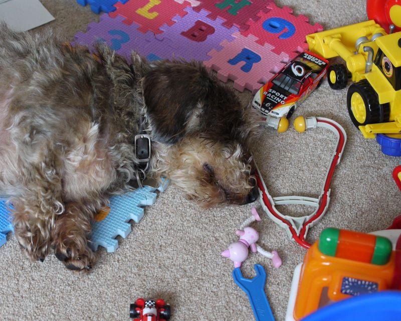 Doug-lying,-toys,-better-pi