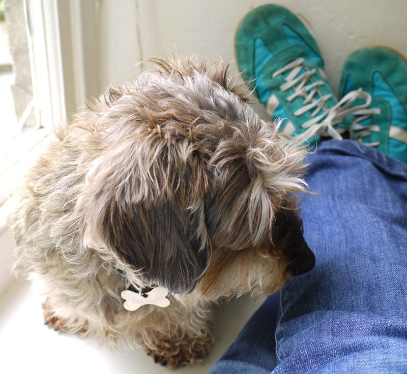 Doug,-my-shoes
