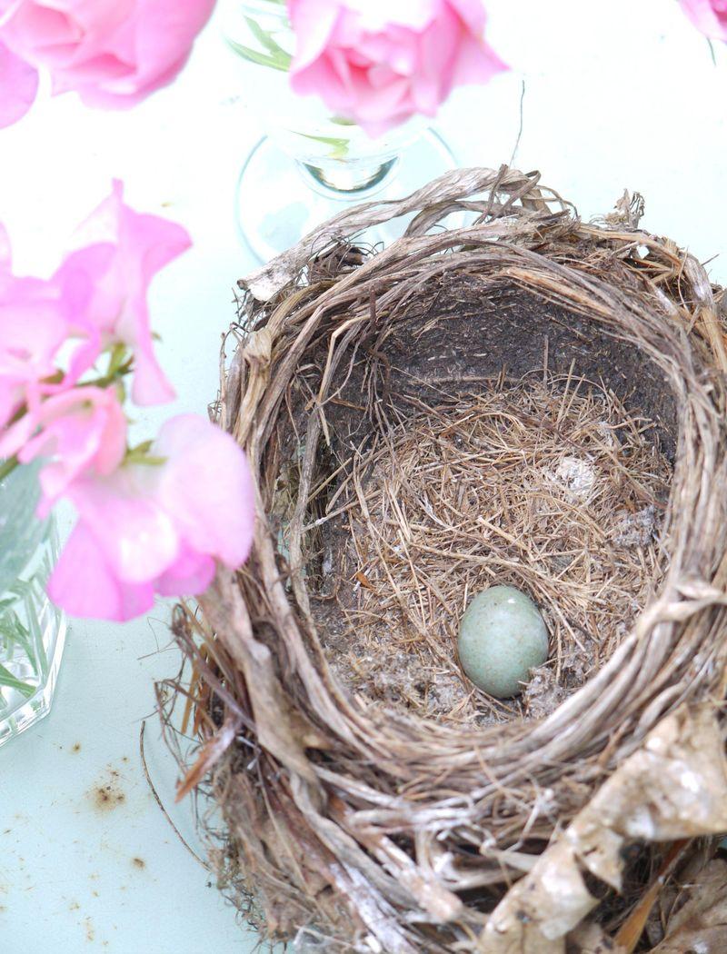 Nest-wflowers