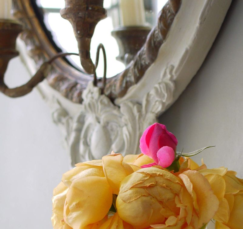 Mirror-and-rose.-mos