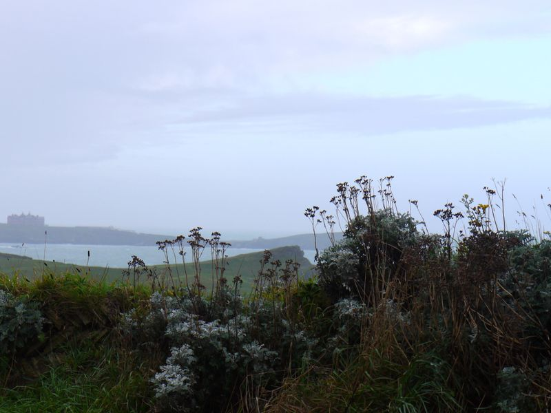 Cornwall-country,-good-pic