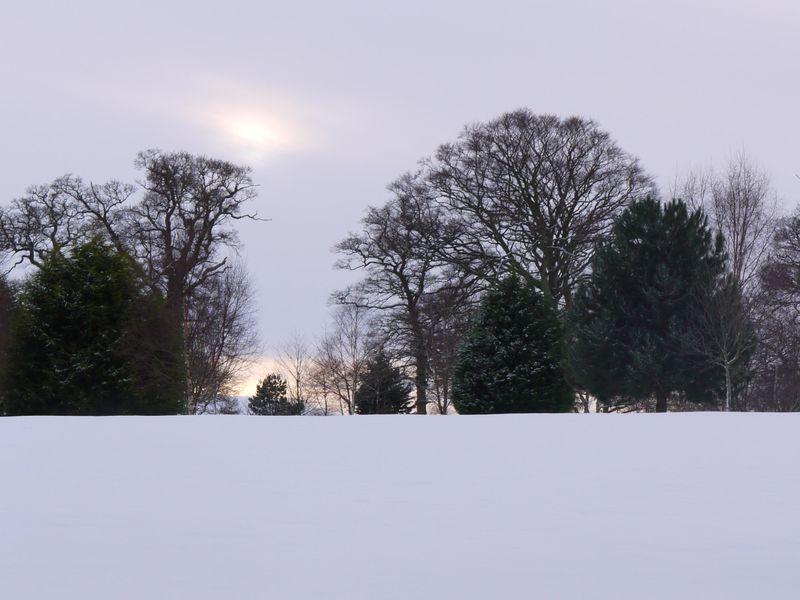Snow,hirsel-2
