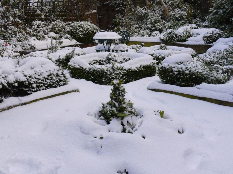 Snow,-garden