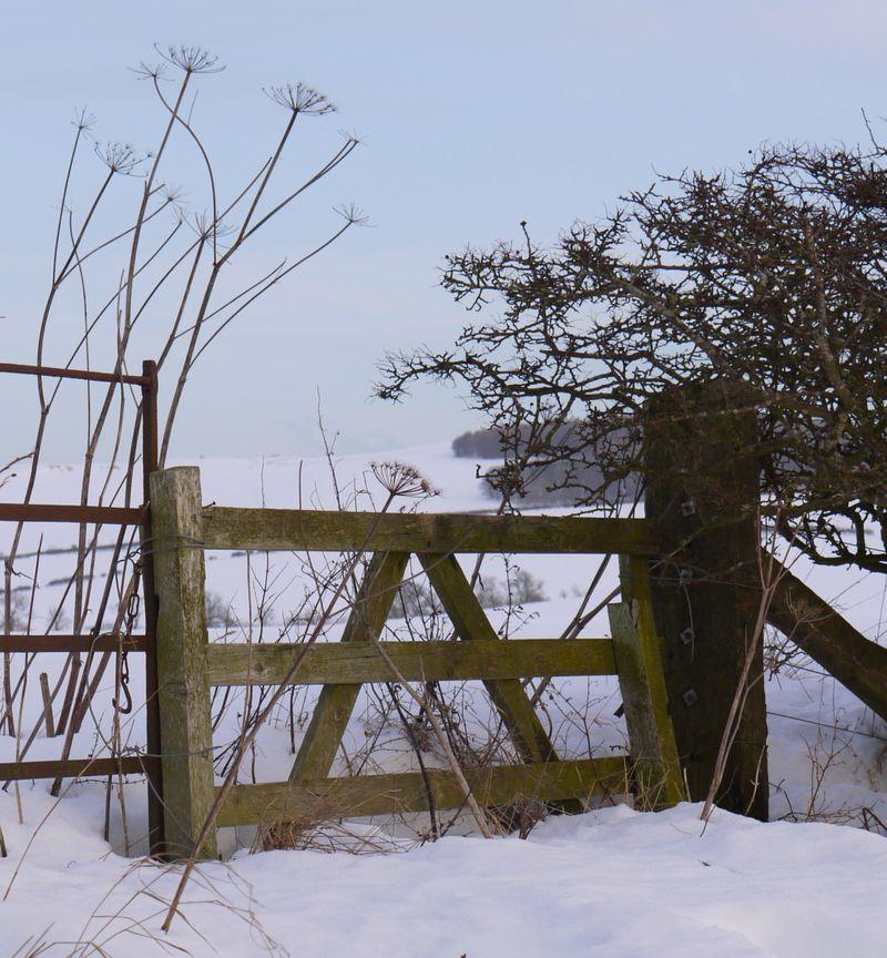 Gate,-snow