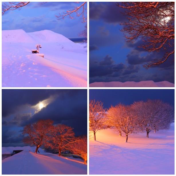 Mosaic, night snow
