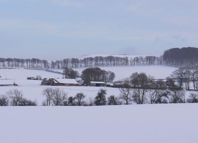 Snow-landscape-2