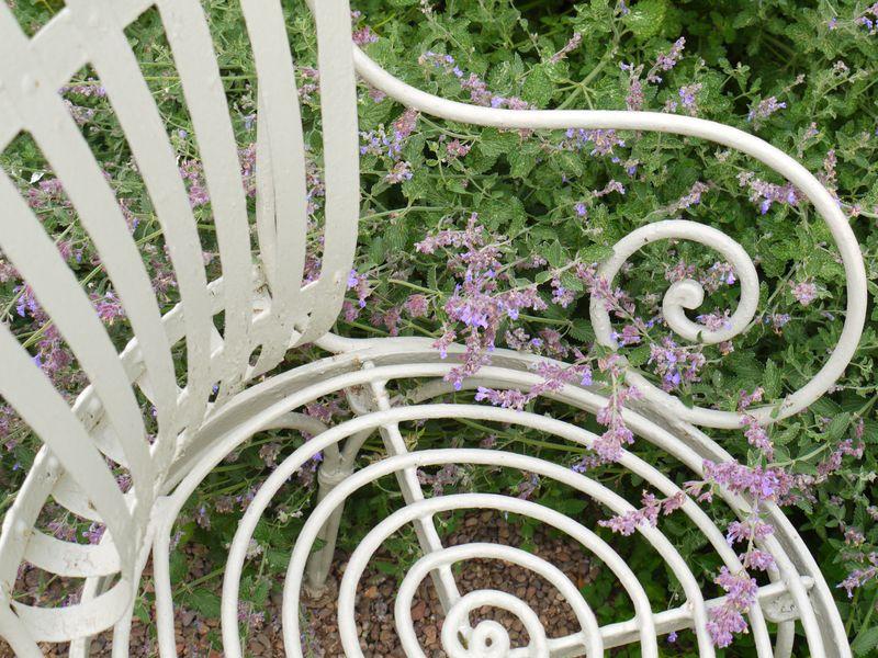 Chair,-1st-pic