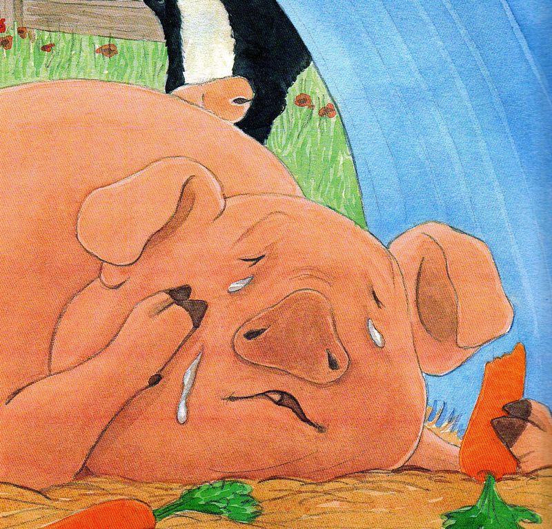 Pig-in-tears