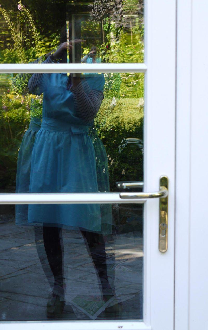 Reflection-in-door