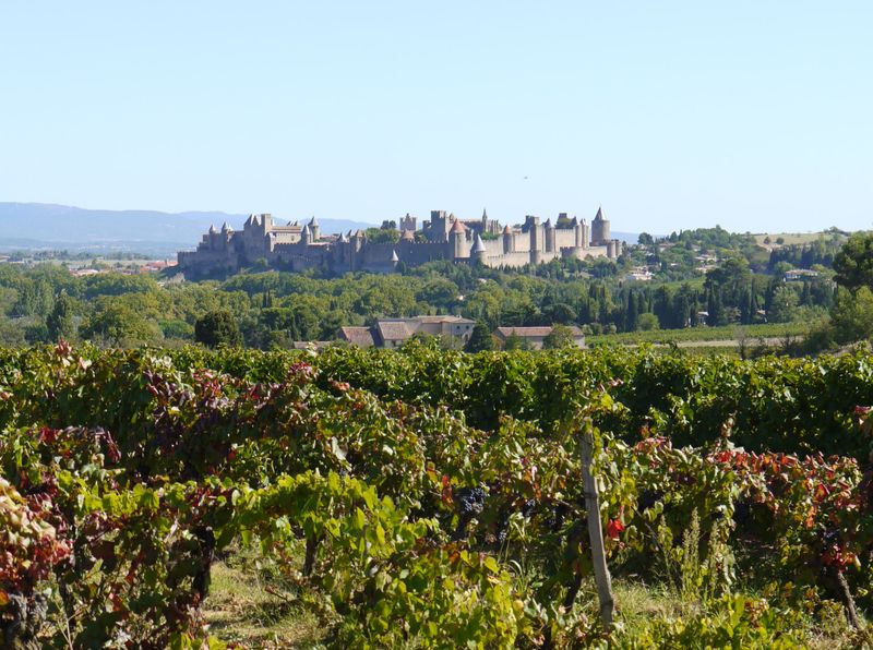 Carcassone-from-distance
